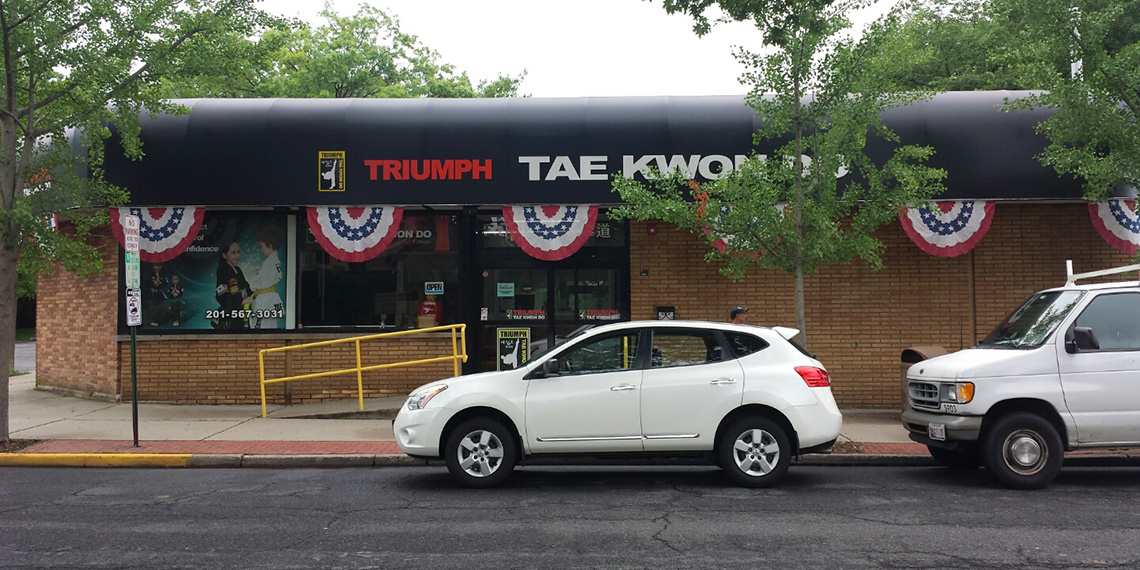 Triumph Taekwondo 2