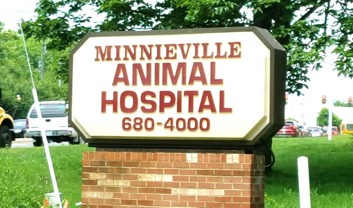Minnieville Animal Hospital 1